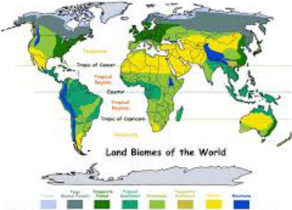 Chaparral World Map.World Distribution Chaparral Biome